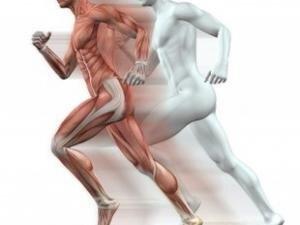 Terapias y estimulación
